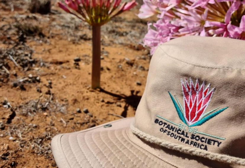 Botanical Society of South Africa cap
